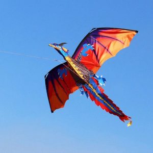 3D 100m Dragon Kite Single Line with Tail