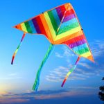 Outdoor Long Tail Kite without Handle Line