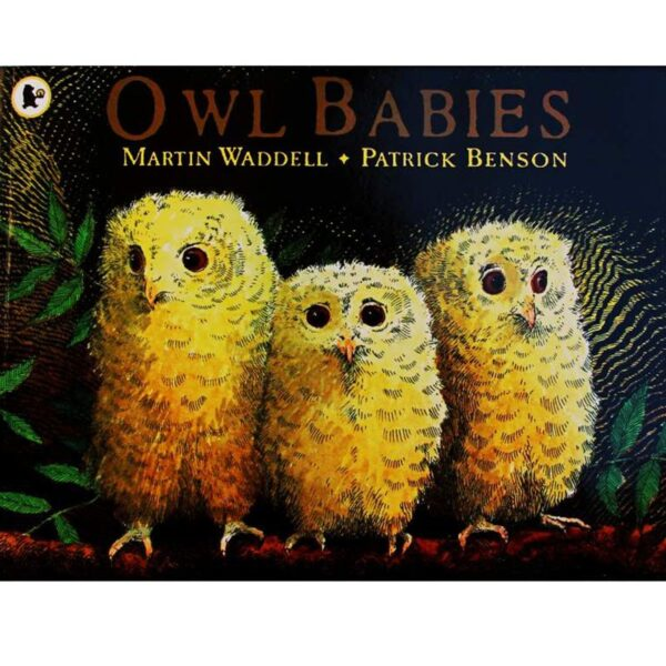 Owl Babies By Martin Waddell English Picture Book