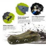 Flytec RC Crocodile Head Remote Toy